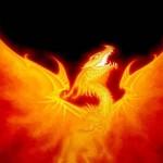 огненный дракон 2012